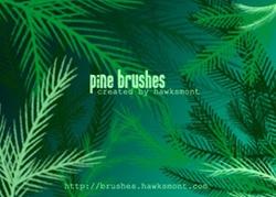 pineBrushes