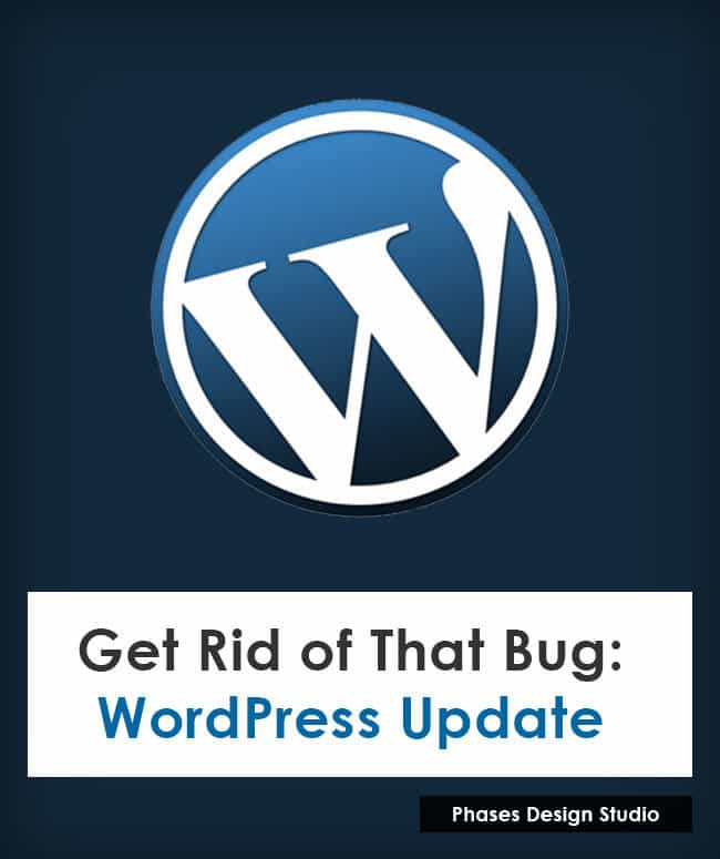 wordpress_383